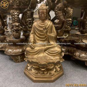 tuong thich ca phu bong (4)