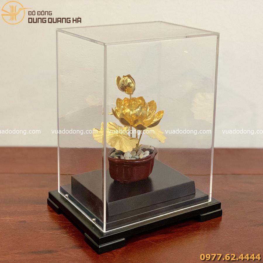 Chậu hoa sen mạ vàng làm quà tặng cao cấp
