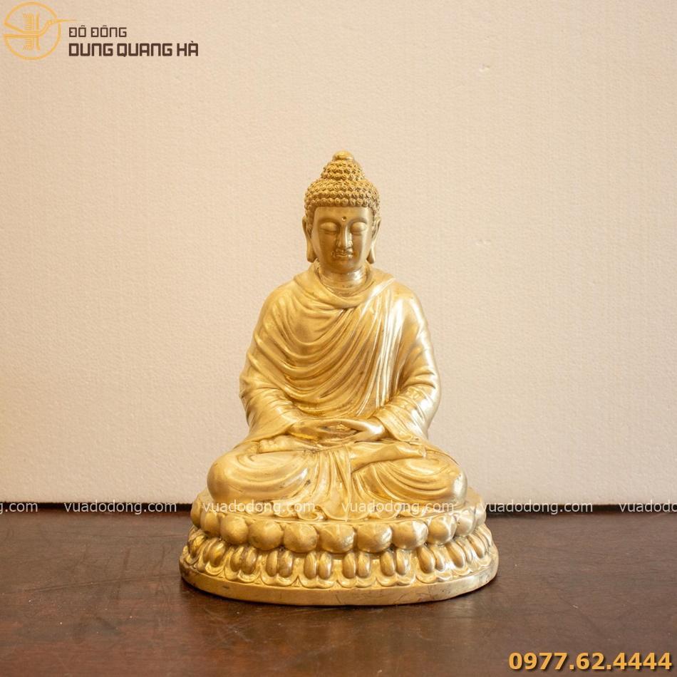 Tuong thich ca cao 29cm (5)