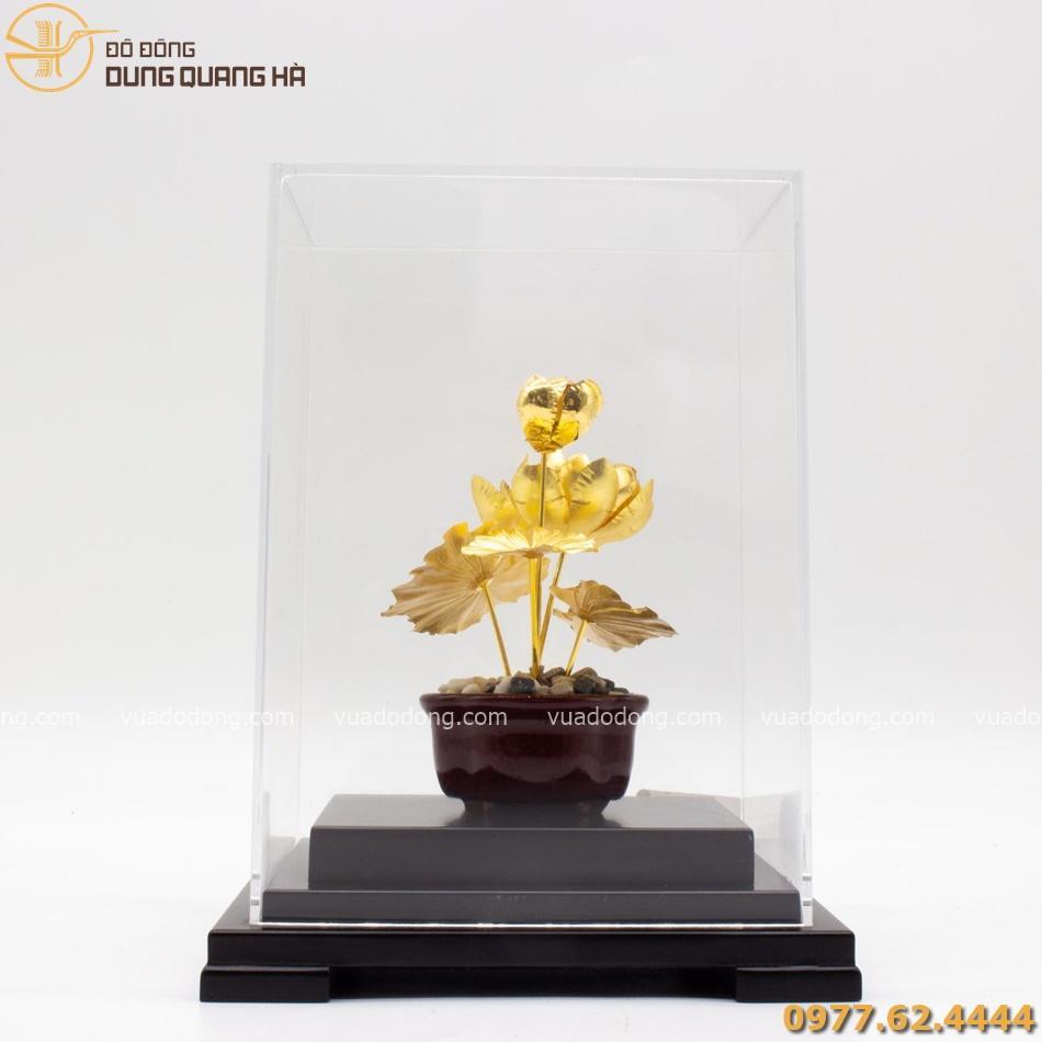 Quà lưu niệm hoa sen mạ vàng tinh xảo