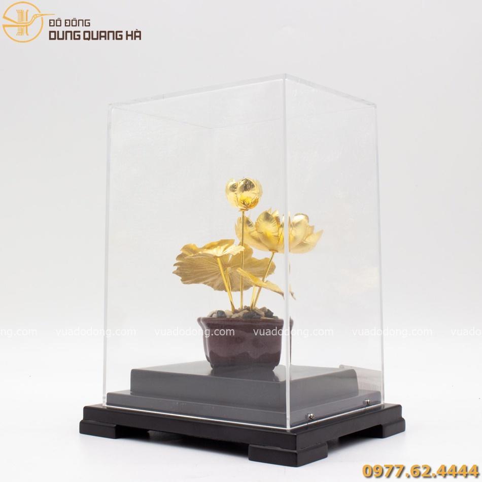 Quà lưu niệm hoa sen mạ vàng cuốn hút