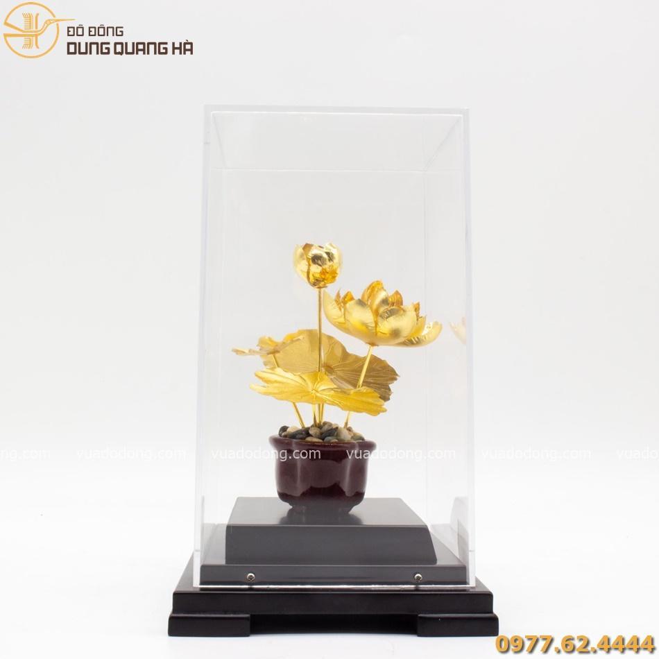 Quà lưu niệm hoa sen mạ vàng có tạo hình chân thật