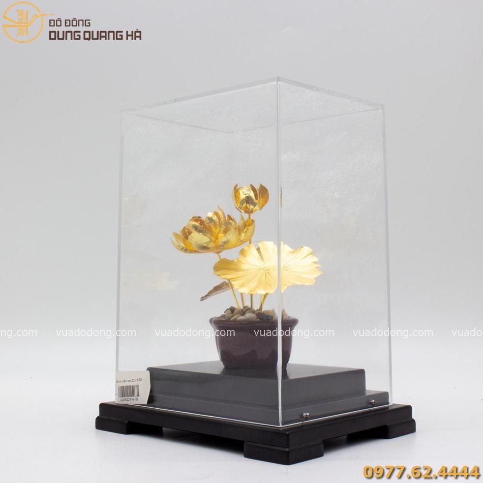 Quà lưu niệm hoa sen mạ vàng với thiết kế độc đáo