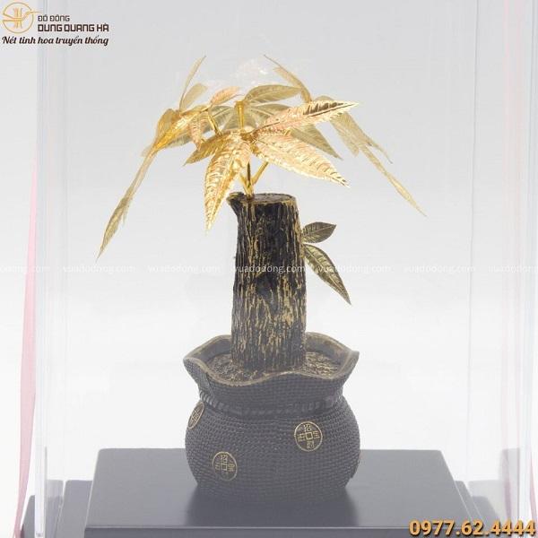 Quà lưu niệm cây kim tiền mạ vàng 24k kích thước 22x16cm