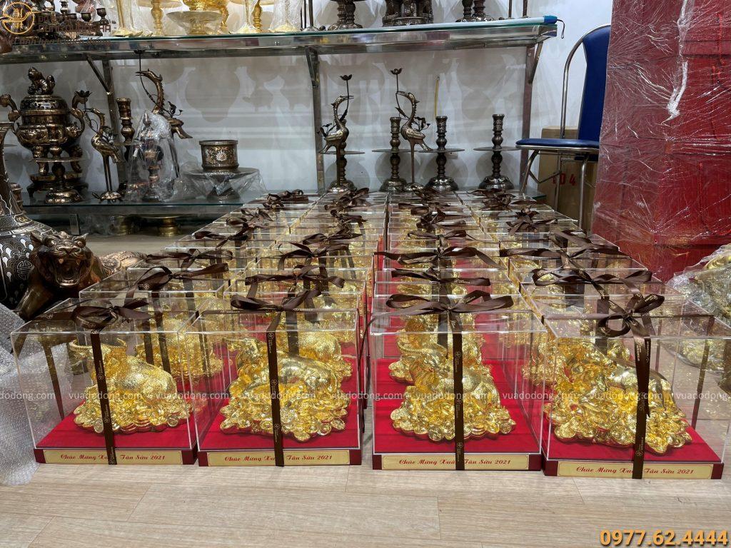 số lượng lớn trâu quà tặng mạ vàng